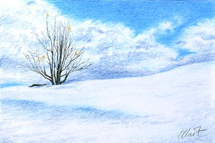 """Yelena Shabrova ~ A sketch a day: winter emptiness ~ colored pencil on drawing paper, 6"""" x 4"""""""