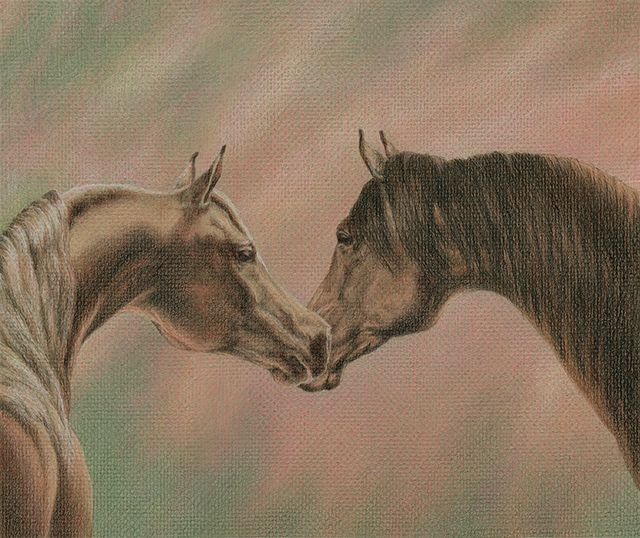 "Bonding - colored pencil on colored paper, 12"" x 10"""