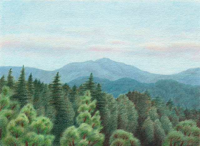 Summer Day in Santa Cruz Mountains - colored pencil on watercolor paper, 14.5