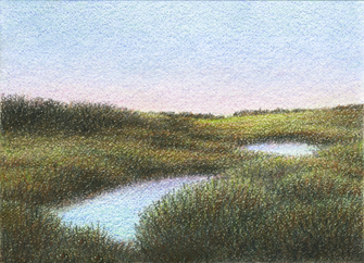 "Yelena Shabrova ~ marsh after sunset - ATC ~ colored pencil, 3.5"" x 2.5"""