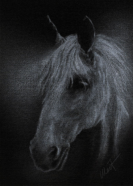 "Yelena Shabrova ~ Ghostly White ~ white Prismacolor colored pencil on canvas board, 5"" x 7"""