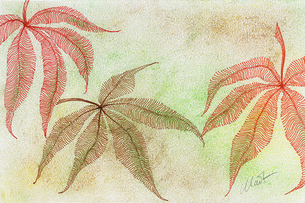 "Yelena Shabrova ~ A sketch a day: striped leaves ~ pen and ink, pastel on Canson drawing paper, 6"" x 4"""