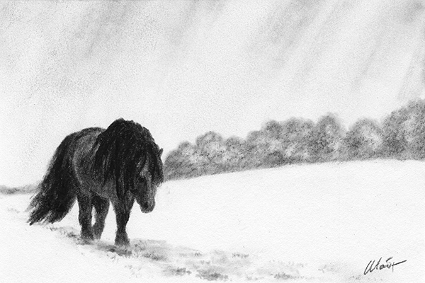 "Yelena Shabrova ~ A sketch a day: horse in the snow ~ Derwent charcoal pencil on Canson drawing Paper, 6"" x 4"""