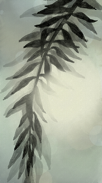 Yelena Shabrova ~ A sketch a day: leafy branch ~ digital art