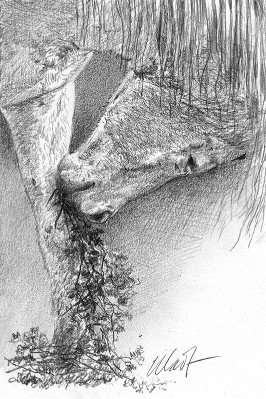 "Yelena Shabrova ~ A sketch a day: conflicting needs of those with no hands ~ graphite pencil, 4"" x 6"""