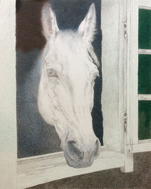 "Yelena Shabrova ~ Hello (work in progress) ~ colored pencil on Strathmore watercolor paper, 11"" x 14"""